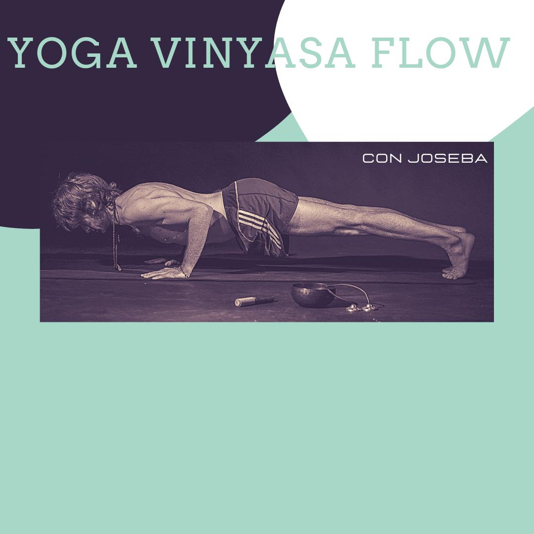 vinyasa flow josebayoga